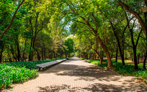 anahuac_recomendaciones-parque-chapultepec